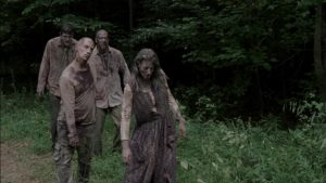 Zombies from Walking Dead